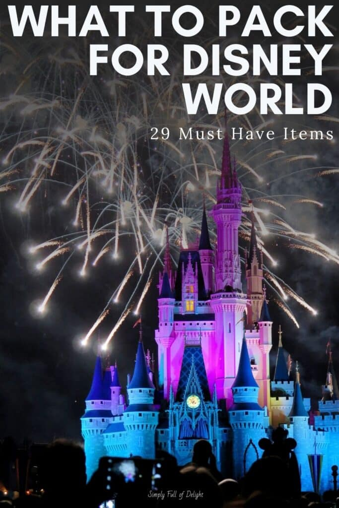 What to Pack for Disney World - 29 Must Have Items
