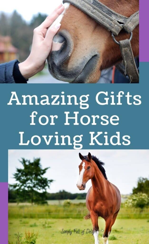 Fantastic gifts for horse loving kids!  Here's 20 amazing gifts for kids who love horses!  Find the perfect horse gifts for kids today.